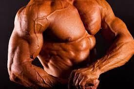 Big Muscle Anabolic Supplement