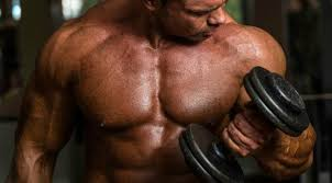 Hard Muscle Gains Easy